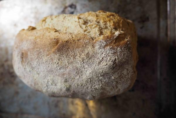 Haste S Kitchen Spelt Bread